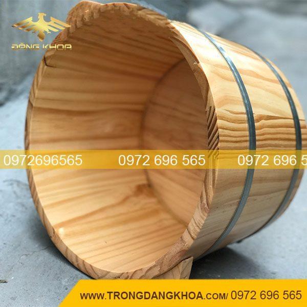 Chậu gỗ ngâm chân bằng gỗ thông siêu bền đẹp